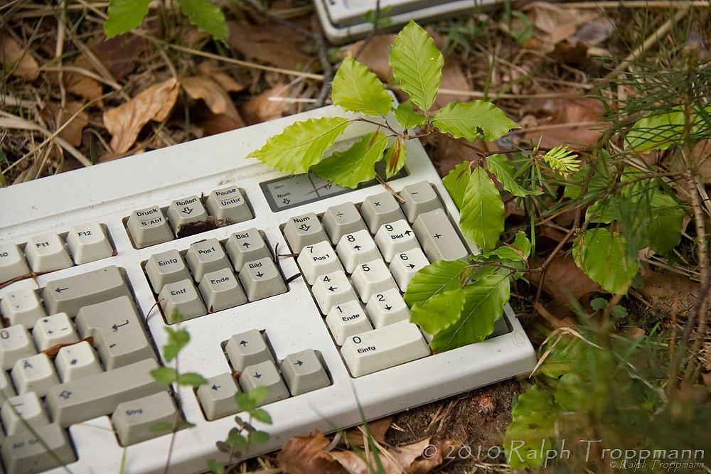 """""""Natural Keyboard"""""""
